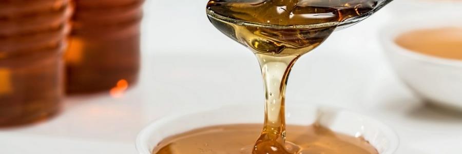 דבש כמרפא לשיעול