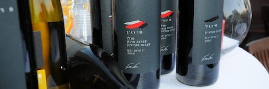 אחסון יינות וטמפרטורת הגשה