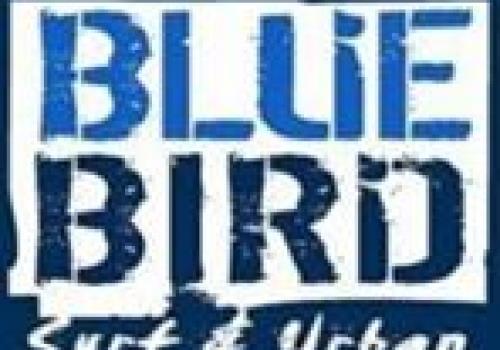 בלו ברד Blue Bird