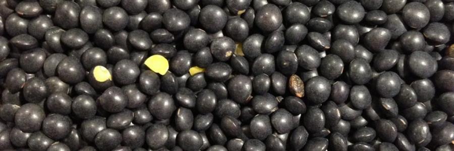 בעבור נזיד עדשים…(שחורות)
