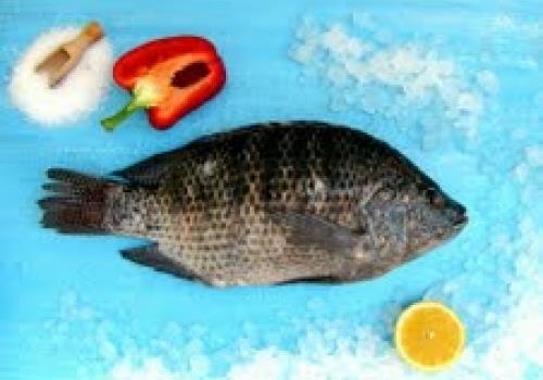 דג אמנון טרי- ערכים תזונתיים