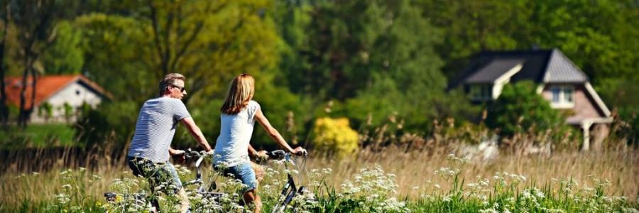 כיצד רכב דו גלגלי ממונע יכול להחזיר את השקט לחיים שלכם