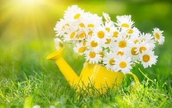 כיצד לאכול בריא בעונת האביב?