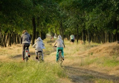הולנד עם ילדים – טיול חלומי שאי אפשר לשכוח