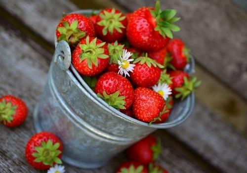 תזונה בריאה: דנה שמחוני (Dana Simchoni) ממליצה על טבעונות אך עם כוכבית