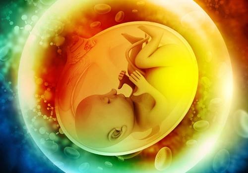 משככי כאבים בלידה