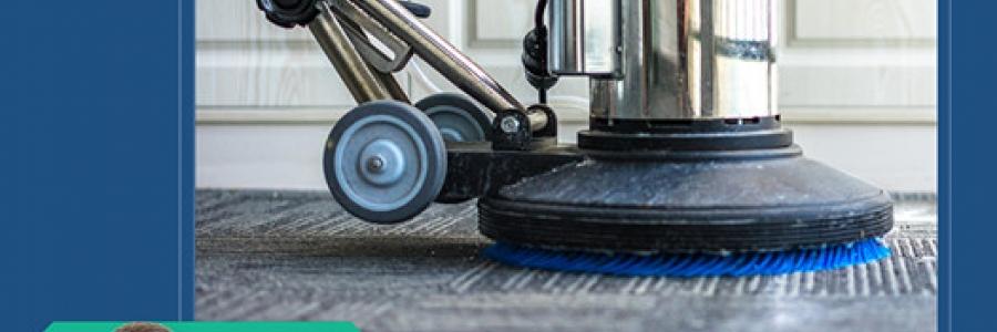 תהליך ניקוי השטיחים ובחירת חברת ניקוי שטיחים